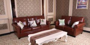 America Leather Sofa, Sectional Sofa, Amazon Sofa (HA06) pictures & photos