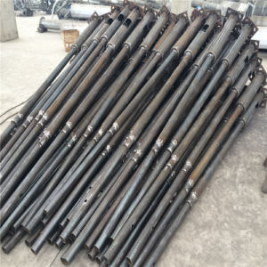 CE ISO RoHS 6m Hot Galvanized Garden Light Pole pictures & photos