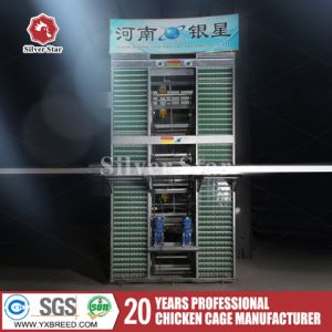 Poultry Farm Chicken Eggs Battery Cages for Chicken Breeding pictures & photos