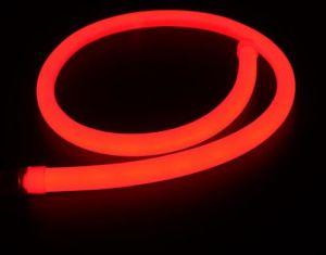 Jacket with 120PCS LEDs 8W LED Neon Flex pictures & photos