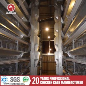 Layer Broiler Chicken Cage for Big Poultry Farm pictures & photos