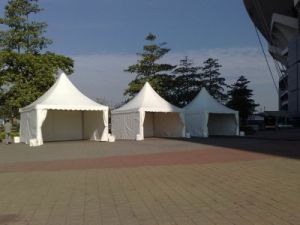 Gazebos with Weight Plate Pagoda Tent pictures & photos