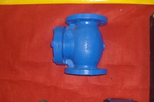 DIN Swing Check Valve (H44T/X-16) pictures & photos