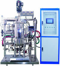 Eastbio® Gujs Series Mechanical Stirred Stainless Steel Fermentor pictures & photos