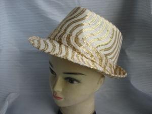 Hat (XX2010-005) pictures & photos