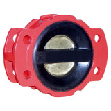 Rubber Coated Check Valve pictures & photos