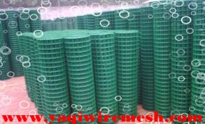 Factory Direct Supply High Quality PVC Coated Weled Wire Mesh pictures & photos