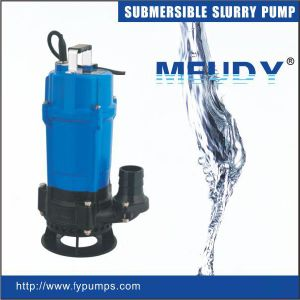 Submersible Slurry Pump (FDM series) pictures & photos