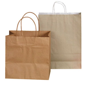 Brown Kraft Paper Bag with Twist Handle