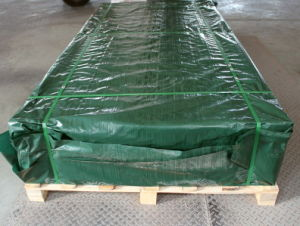 Cast Acrylic Sheet Packed by Fumigated Pallet pictures & photos