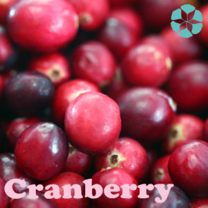 Cranberry Extract / Vaccinium Macrocarpon Extract / Anthocyandin / Proanthocyanidin pictures & photos