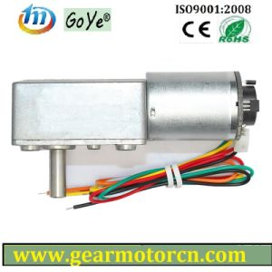 W. Encoder DC Motor (GYW-46WE1)