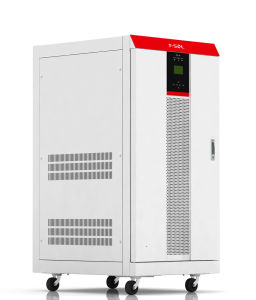 off-Grid Storage System Power Solar Inverter with Battery Bank 3000W (TES3K)