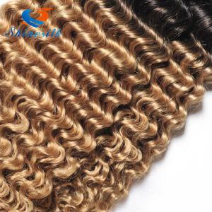 Malaysian Virgin Deep Wave Curly Hair 1b/27/30 Ombre Malysian Virgin Hair pictures & photos