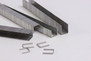 Industrial Wire Staple (F75) pictures & photos