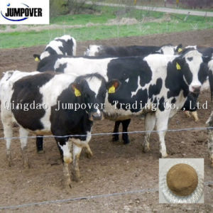 Low Price Kelp Meal for Improve Animal Immunity pictures & photos