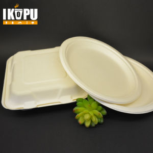 Bagasse Pulp Food Container Lockable Food Container pictures & photos