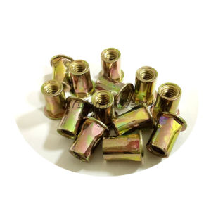 Zinc Plated Flat Head Inside&Outside Hexagon Rivet Nut pictures & photos