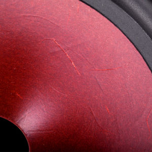 High Stronger Power Car Speaker Audio Loud Subwoofer Speaker pictures & photos