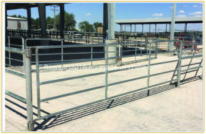 Hot Dipped Galvanized Cattle Fencing Panel / Gate Livestock Fence pictures & photos