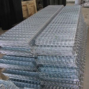 Galvanized/Stainless Steel Welded Wire Mesh pictures & photos