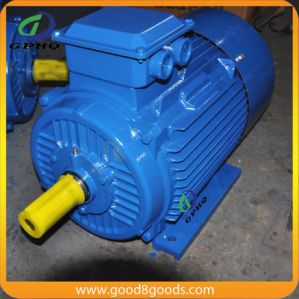 Ye2 25HP/CV 18.5kw 1450rpm Cast Iron Squirrel Cage AC Motor pictures & photos