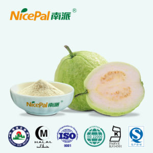 Fresh Guava Plant Extract Guava Fruit Juice Powder From China Factory pictures & photos