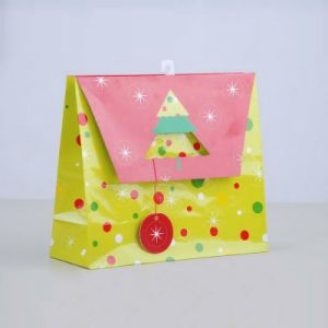 Custom Print High Quality Paper Shopping Gift Bag for Hot-Selling pictures & photos