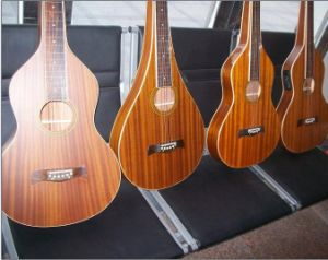 Aiersi Wholesale Various Handmade Hawaii Weissenborn Guitar pictures & photos