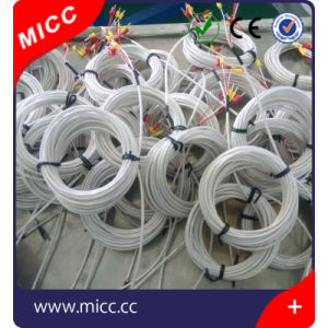 Micc Rtd PT100 Sensor with Lead Wires pictures & photos