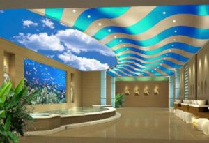 Custom Mural Non-Woven Roof Ceiling Adornment Wall Mural Wallpaper Home Decor pictures & photos