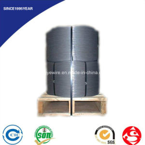 Hot Sale High Quality Steel Wire 3mm pictures & photos