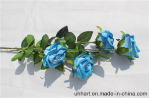 Hot Selling 5heads Round Rose Sticks for Wedding pictures & photos