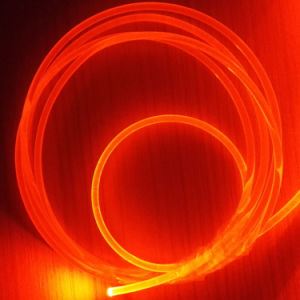 Optic Fiber for Swimming Pool Star Light pictures & photos
