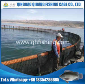 Fish Culture Fish Farming Cage/HDPE Fish Cage pictures & photos