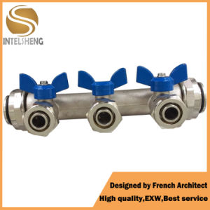 3 Way Valve Manifold for Sale pictures & photos