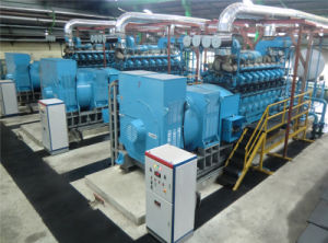 1MW-50MW Diesel Gas Hfo Fuel Power Plant Supplier pictures & photos