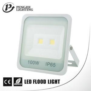 New Design White Reflector 100W High Lumen 70-80lm/W COB LED Flood Light pictures & photos