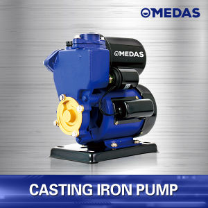 Non-Return and Self-Priming Casting Iron Pump pictures & photos