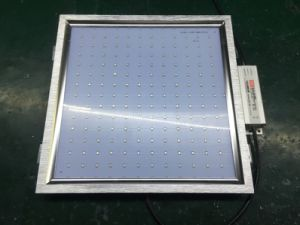 42W LED Grow Light Panel 300*300 pictures & photos