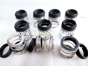 Elastomer Bellow Mechanical Seal as-E20 Replace AES P02 pictures & photos