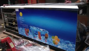 Ice Lolly Machine with Stick CE Approved pictures & photos