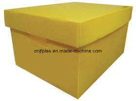 PP Corrugated Box /Plastic Box /Plastic Package pictures & photos
