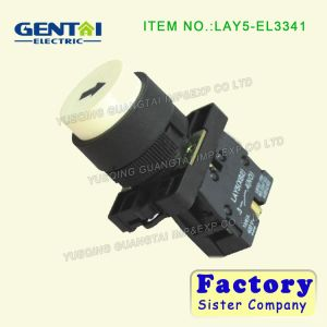 Lay5-EV443 12mm Push Button Switch pictures & photos