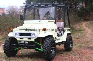 Mini Jeep Willys with 150cc/200cc/300cc China Supply pictures & photos