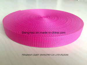"1"" Fuschia PP Webbing for School Bags pictures & photos"