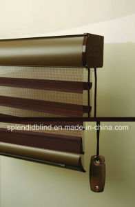 Tube Roller Fabrics Blinds 38mm (SGD-R-3011) pictures & photos