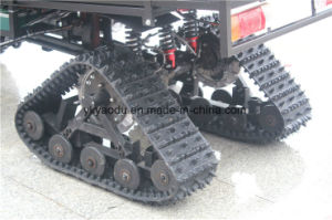 200cc/250cc Chain Driven ATV with Snow Wheel Trailer pictures & photos
