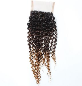 Clip in Human Hair pictures & photos