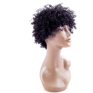 Synthetic Lace Front Wig Curly Synthetic Wigs for Women pictures & photos